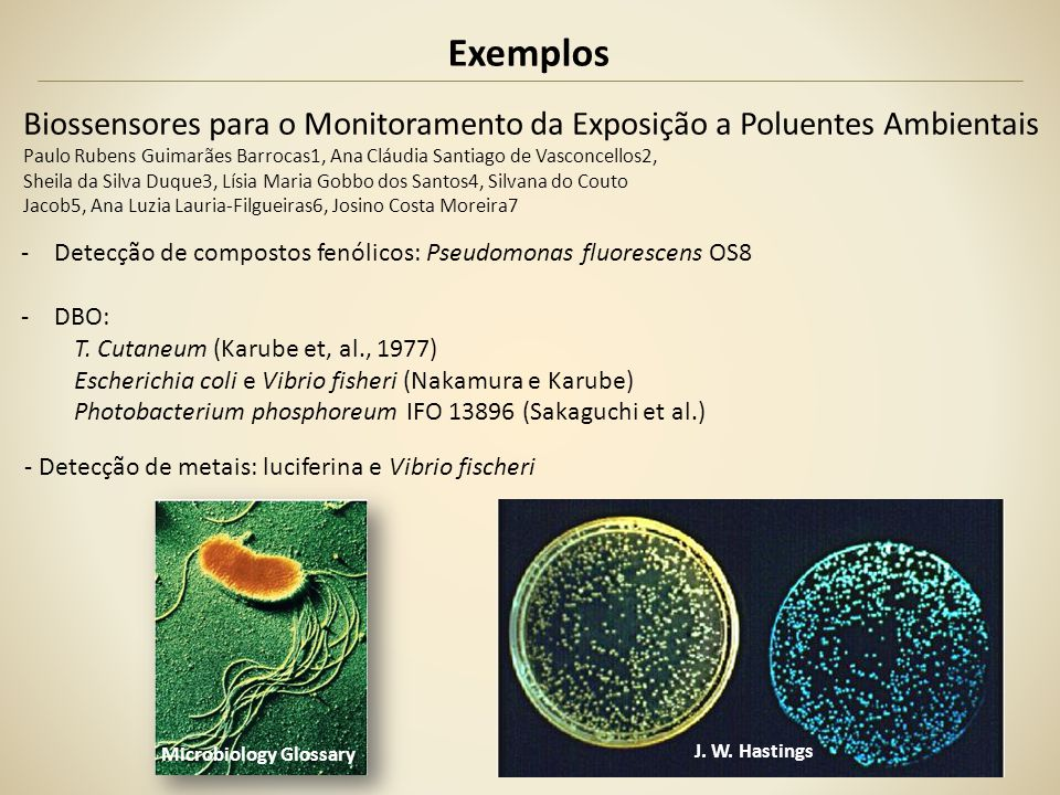 Exemplos Biossensores para o Monitoramento da Exposição a Poluentes Ambientais.