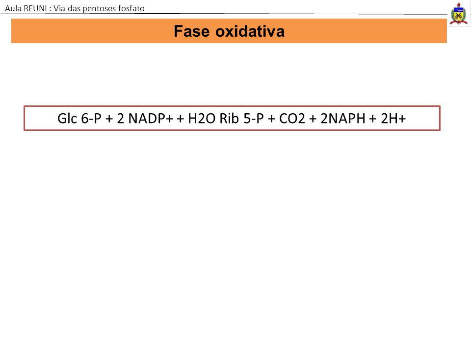 Glc 6-P + 2 NADP+ + H2O Rib 5-P + CO2 + 2NAPH + 2H+
