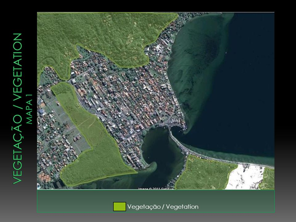 Vegetação / vegetation mapa 1