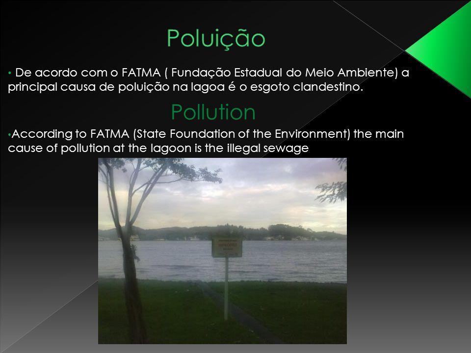 Poluição De acordo com o FATMA ( Fundação Estadual do Meio Ambiente) a principal causa de poluição na lagoa é o esgoto clandestino.