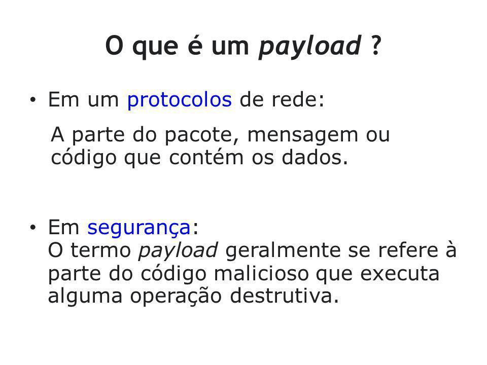 O que é um payload Em um protocolos de rede: