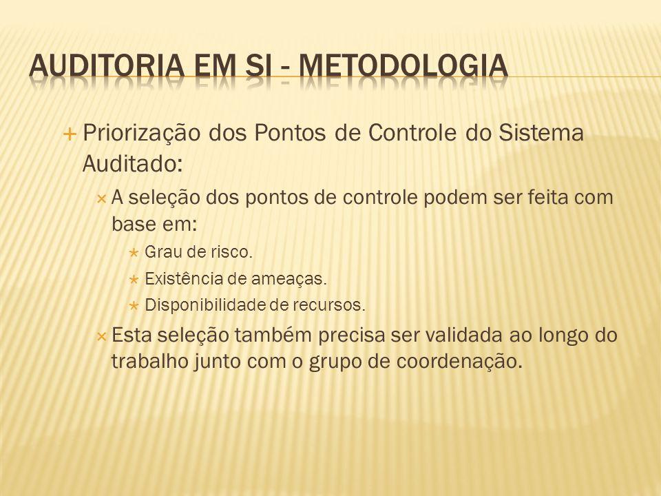 AUDITORIA EM SI - METODOLOGIA