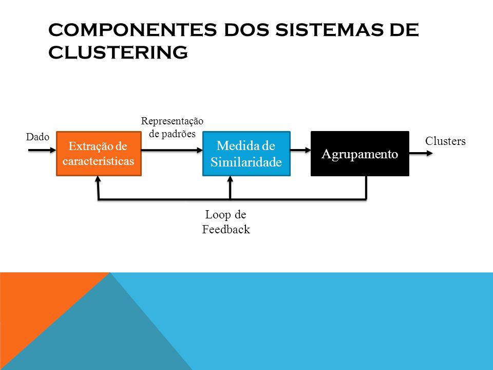 Componentes dos sistemas de clustering