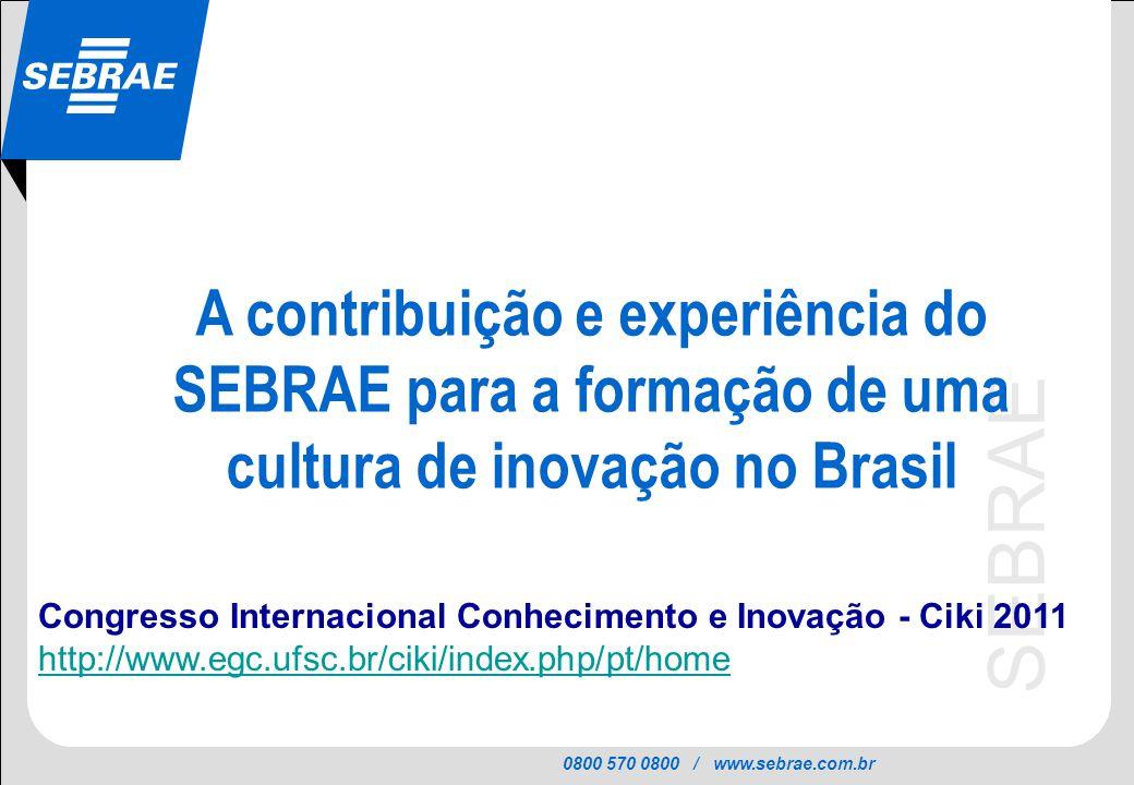 A contribuição e experiência do SEBRAE para a formação de uma cultura de inovação no Brasil