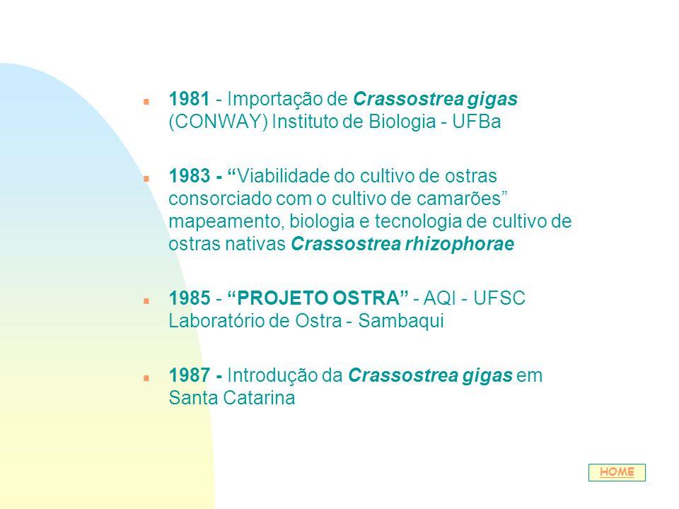 1985 - PROJETO OSTRA - AQI - UFSC Laboratório de Ostra - Sambaqui