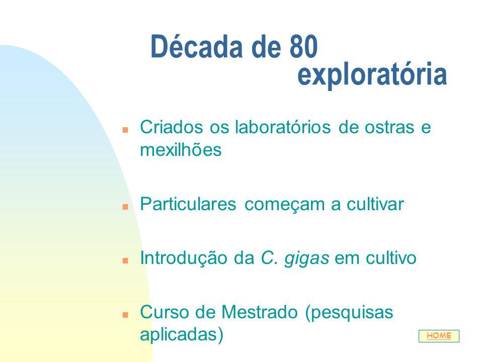 Década de 80 exploratória