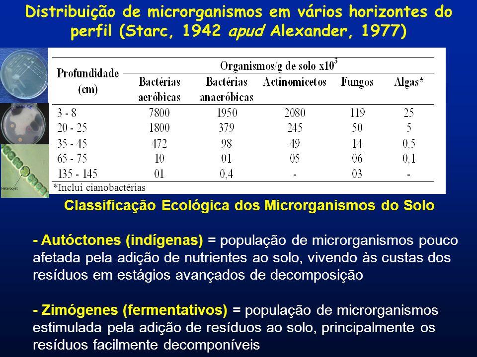 Classificação Ecológica dos Microrganismos do Solo