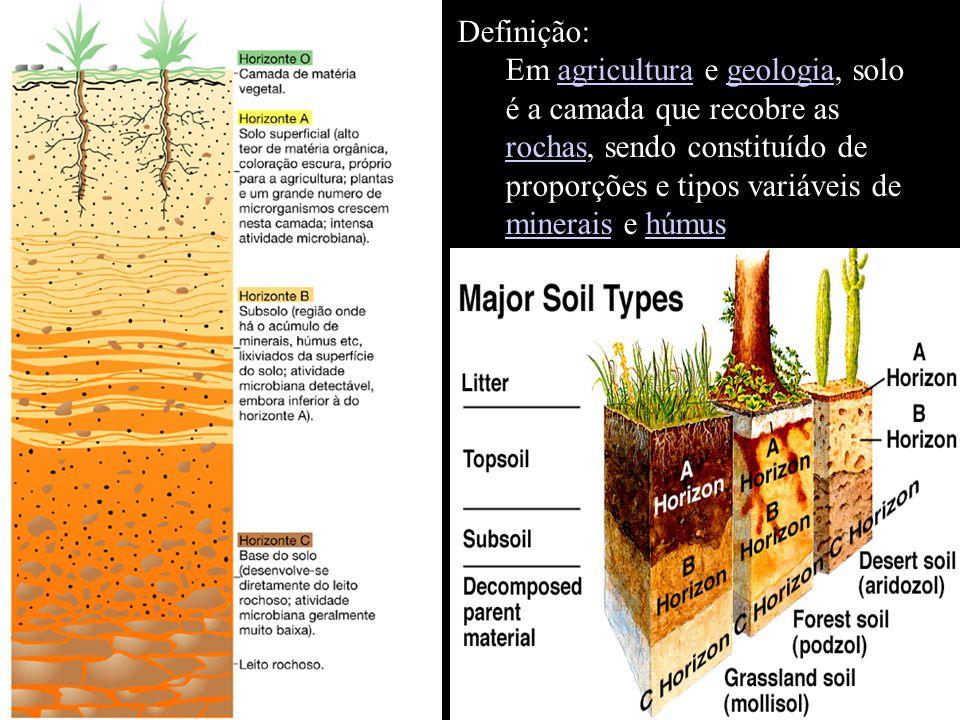 Definição: Em agricultura e geologia, solo é a camada que recobre as rochas, sendo constituído de proporções e tipos variáveis de minerais e húmus.