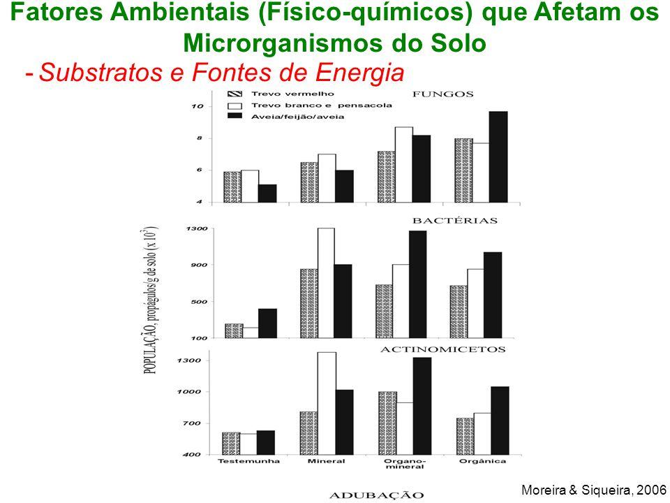 Substratos e Fontes de Energia