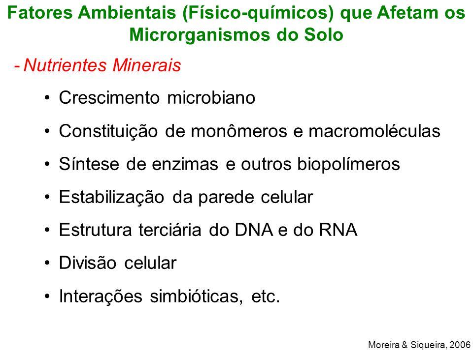 Crescimento microbiano Constituição de monômeros e macromoléculas