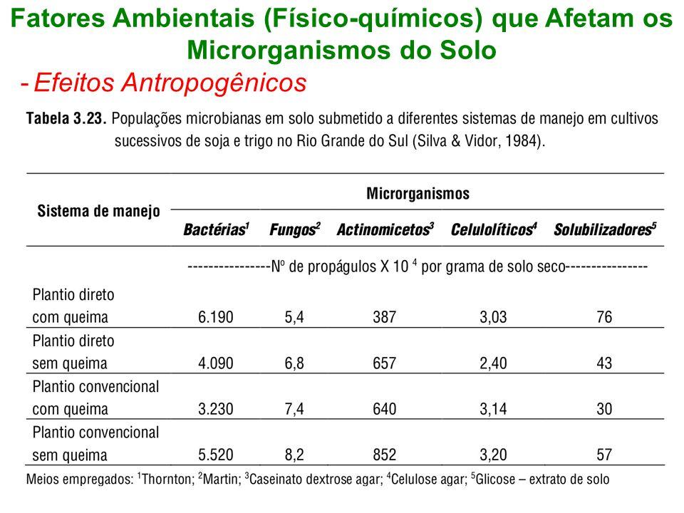 Fatores Ambientais (Físico-químicos) que Afetam os Microrganismos do Solo