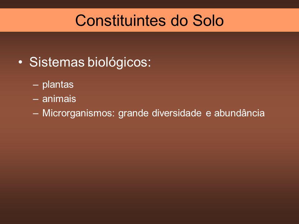 Constituintes do Solo Sistemas biológicos: plantas animais