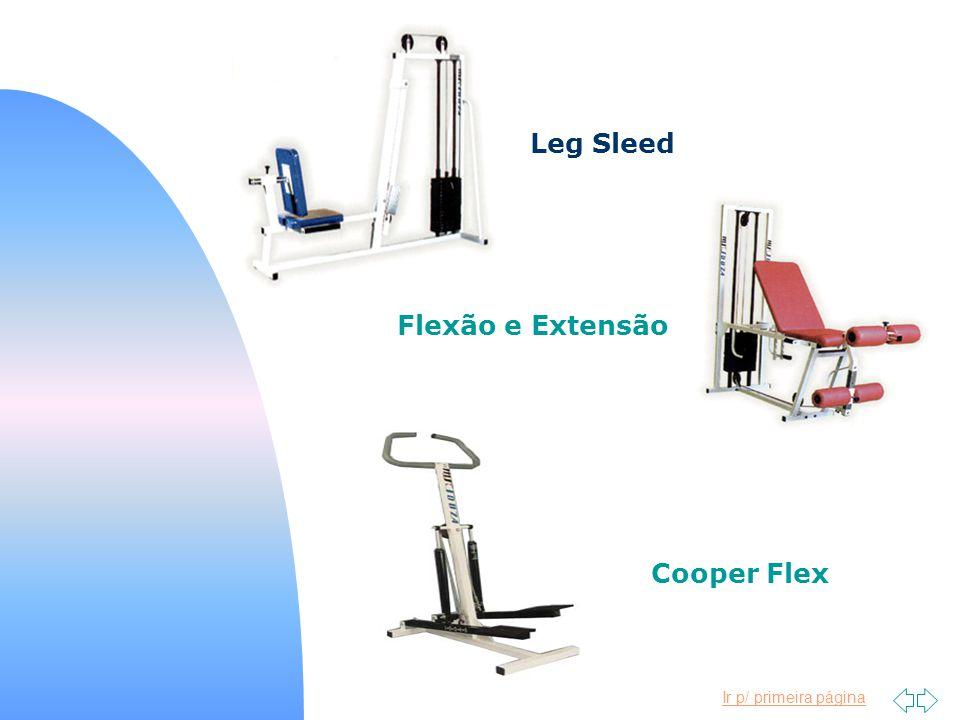Leg Sleed Flexão e Extensão Cooper Flex