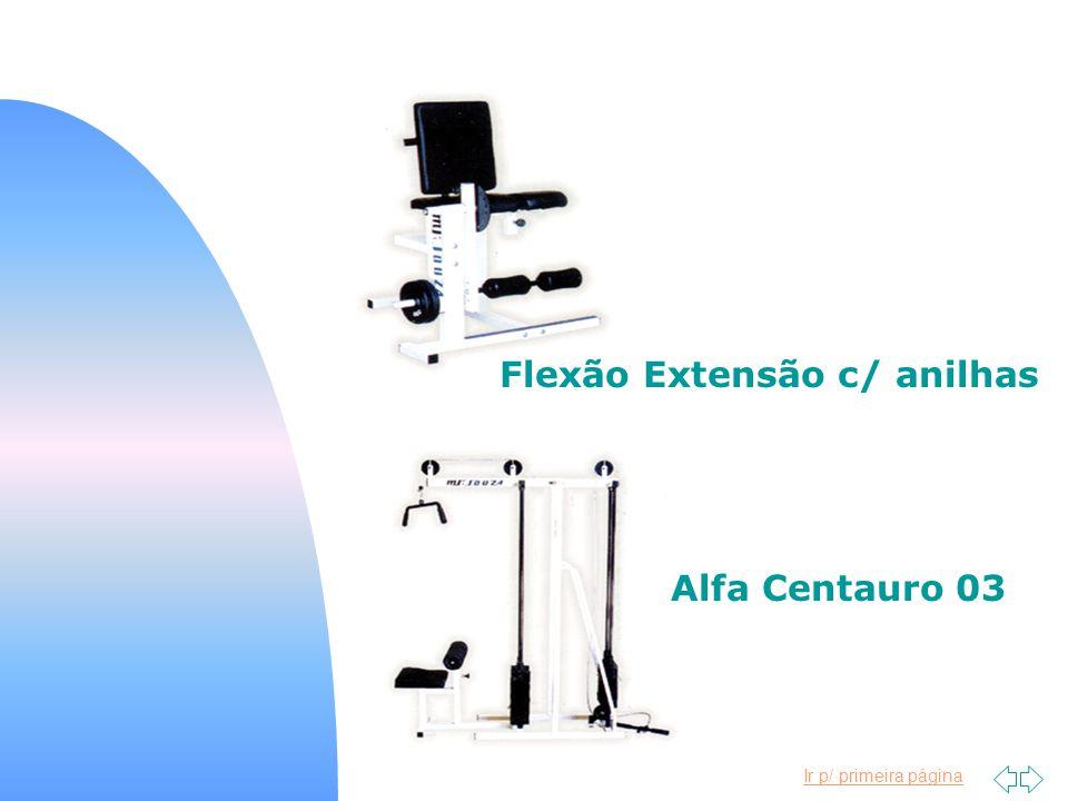 Flexão Extensão c/ anilhas
