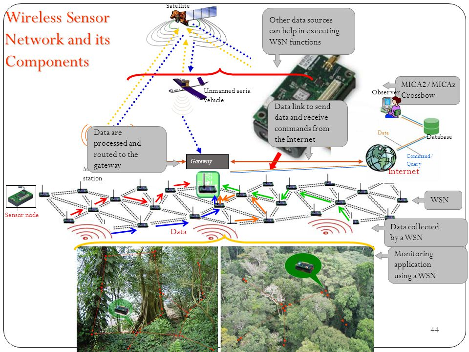 Wireless Sensor Network and its Components