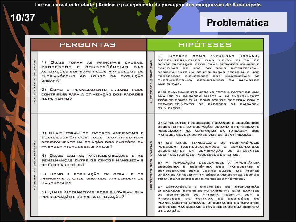 Larissa carvalho trindade | Análise e planejamento da paisagem dos manguezais de florianópolis