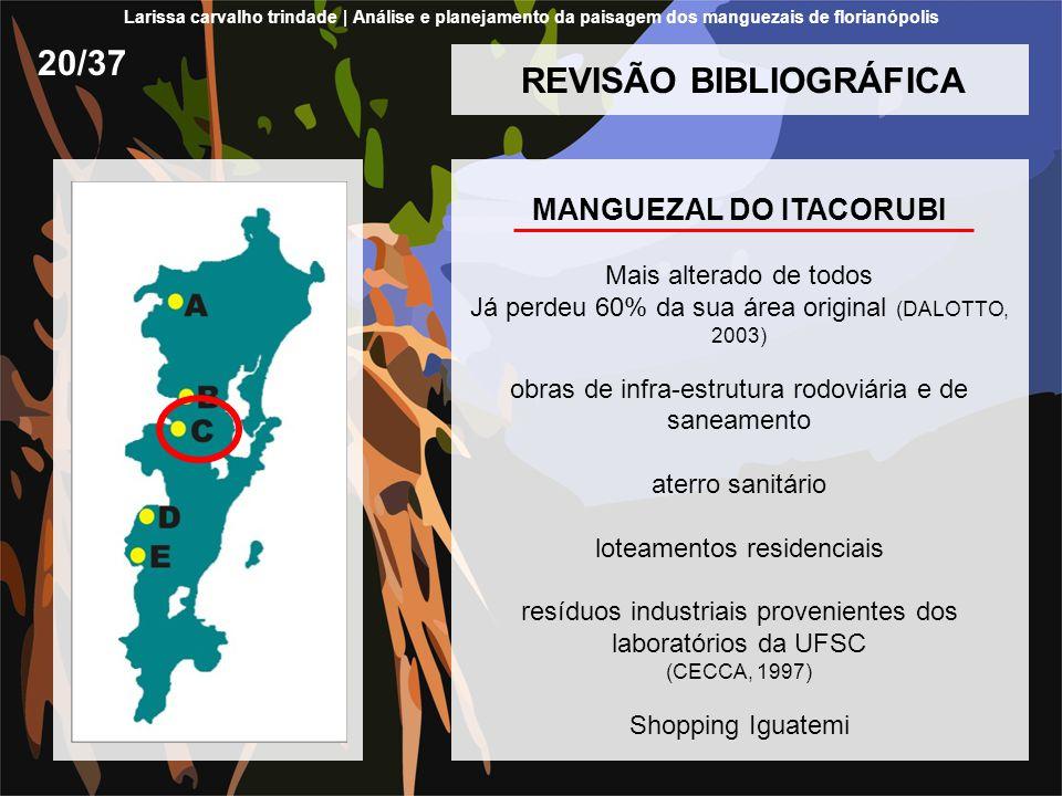 REVISÃO BIBLIOGRÁFICA MANGUEZAL DO ITACORUBI