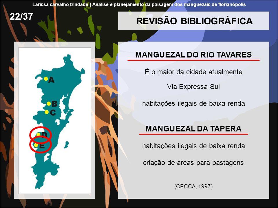 REVISÃO BIBLIOGRÁFICA MANGUEZAL DO RIO TAVARES