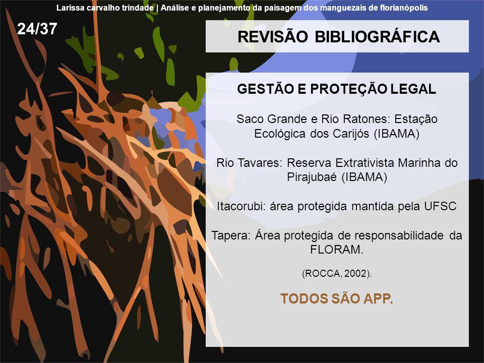 REVISÃO BIBLIOGRÁFICA GESTÃO E PROTEÇÃO LEGAL