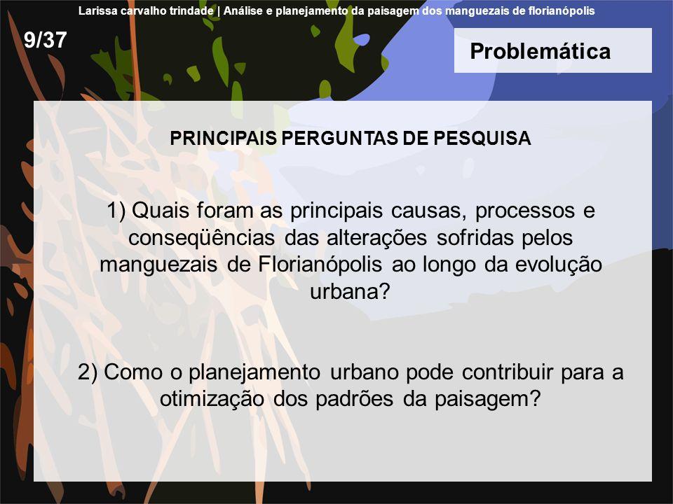 PRINCIPAIS PERGUNTAS DE PESQUISA