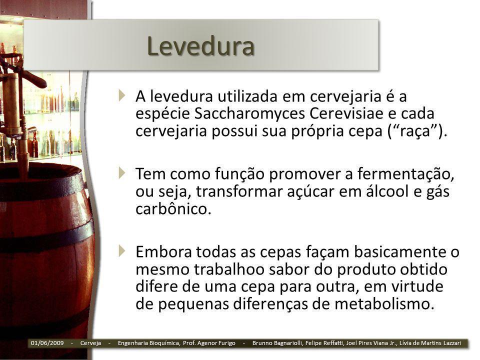 Levedura A levedura utilizada em cervejaria é a espécie Saccharomyces Cerevisiae e cada cervejaria possui sua própria cepa ( raça ).