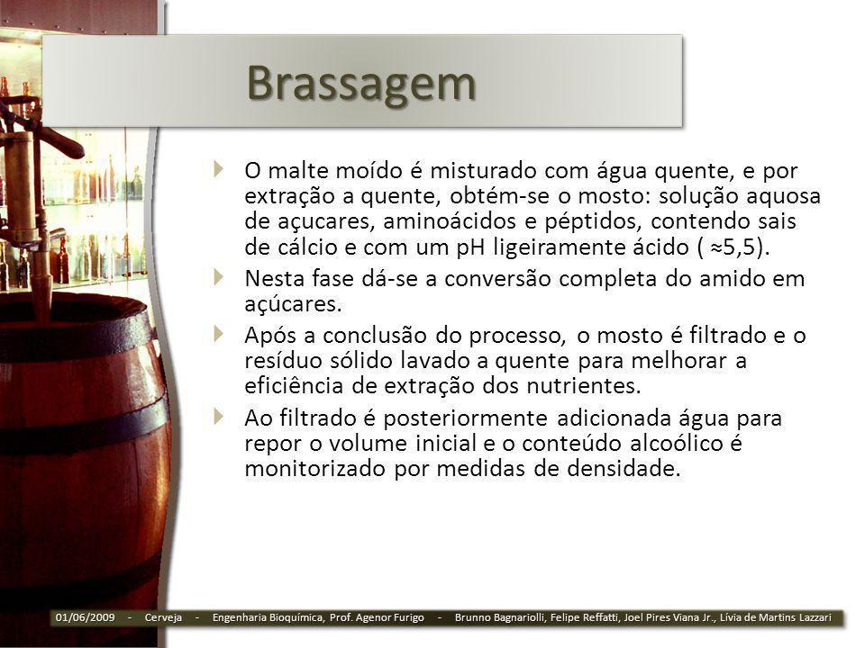 Brassagem