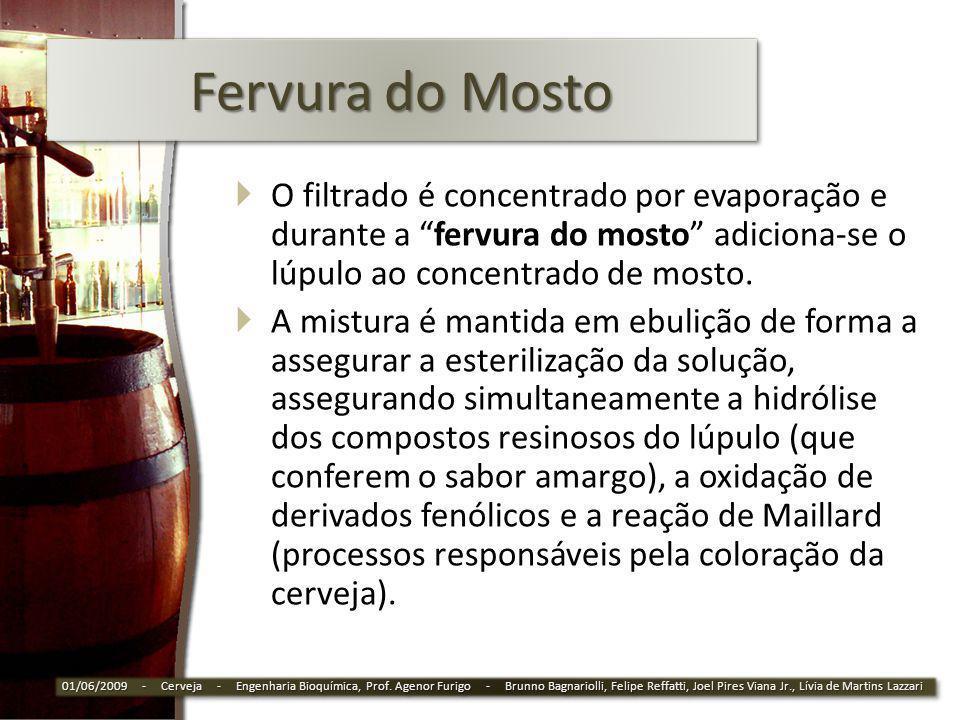 Fervura do Mosto O filtrado é concentrado por evaporação e durante a fervura do mosto adiciona-se o lúpulo ao concentrado de mosto.