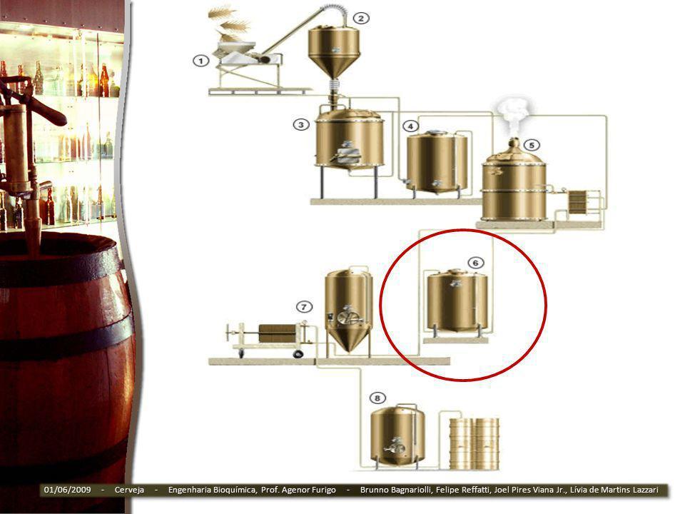 01/06/2009 - Cerveja - Engenharia Bioquímica, Prof