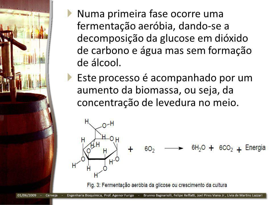 Numa primeira fase ocorre uma fermentação aeróbia, dando-se a decomposição da glucose em dióxido de carbono e água mas sem formação de álcool.