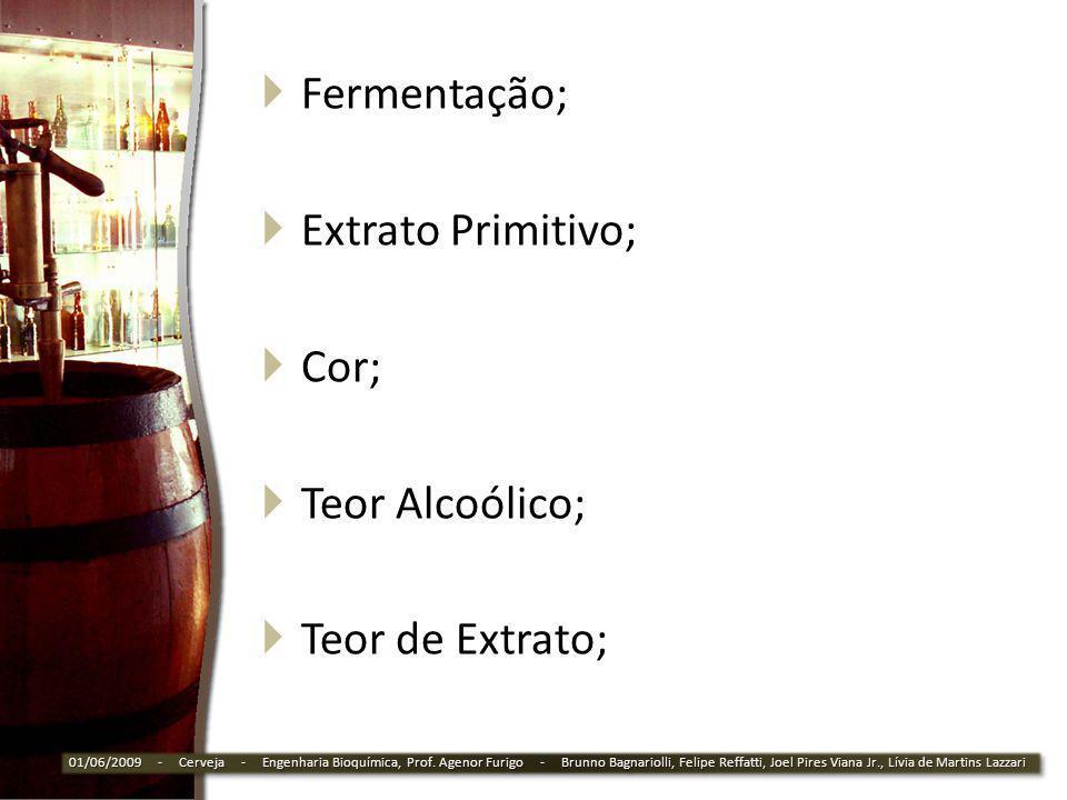 Fermentação; Extrato Primitivo; Cor; Teor Alcoólico; Teor de Extrato;