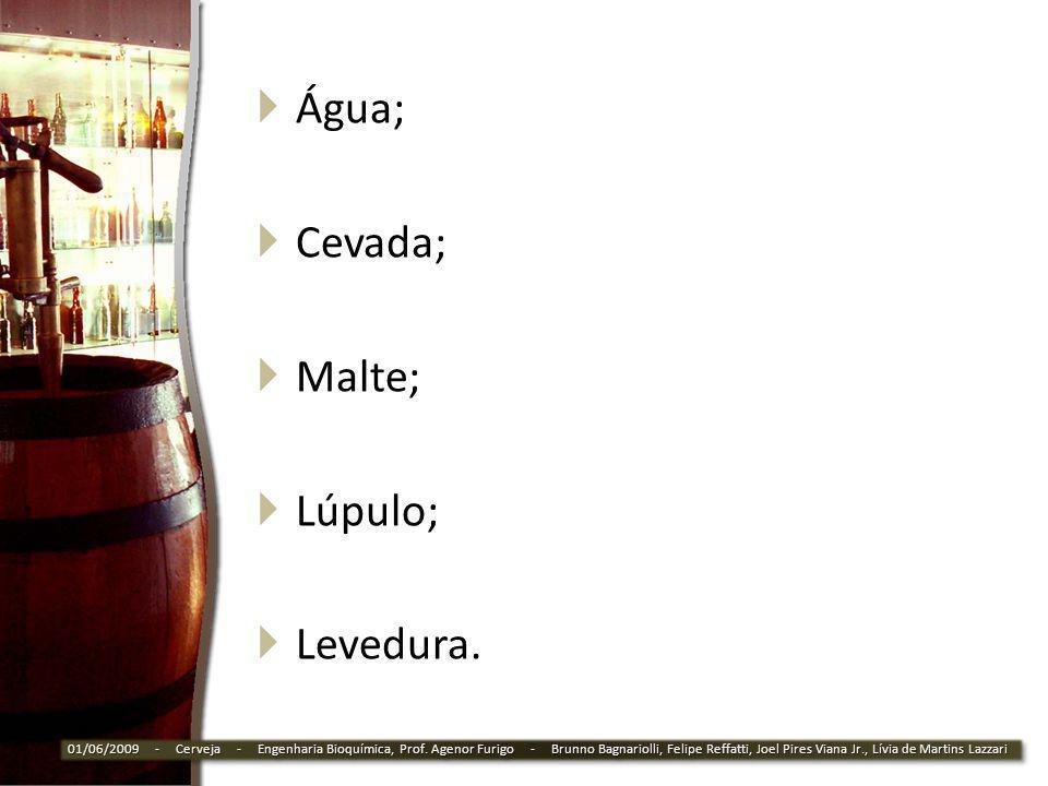 Água; Cevada; Malte; Lúpulo; Levedura.