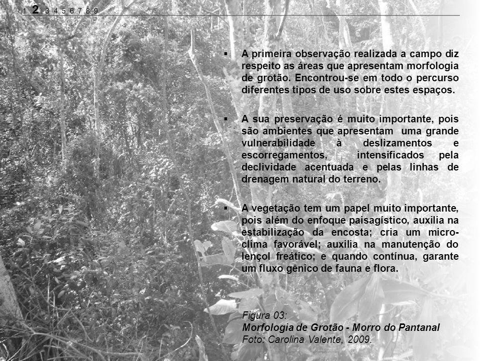Morfologia de Grotão - Morro do Pantanal Foto: Carolina Valente, 2009.