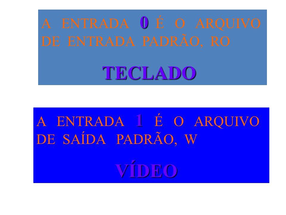 A ENTRADA 0 É O ARQUIVO DE ENTRADA PADRÃO, RO