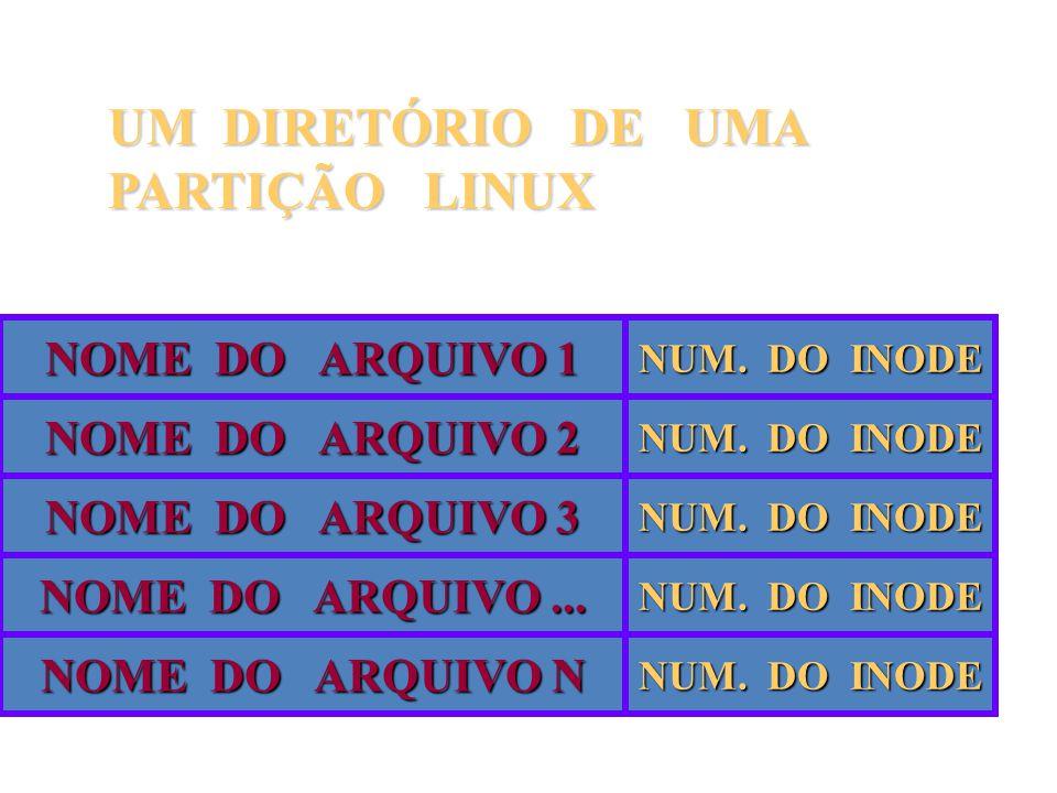 UM DIRETÓRIO DE UMA PARTIÇÃO LINUX