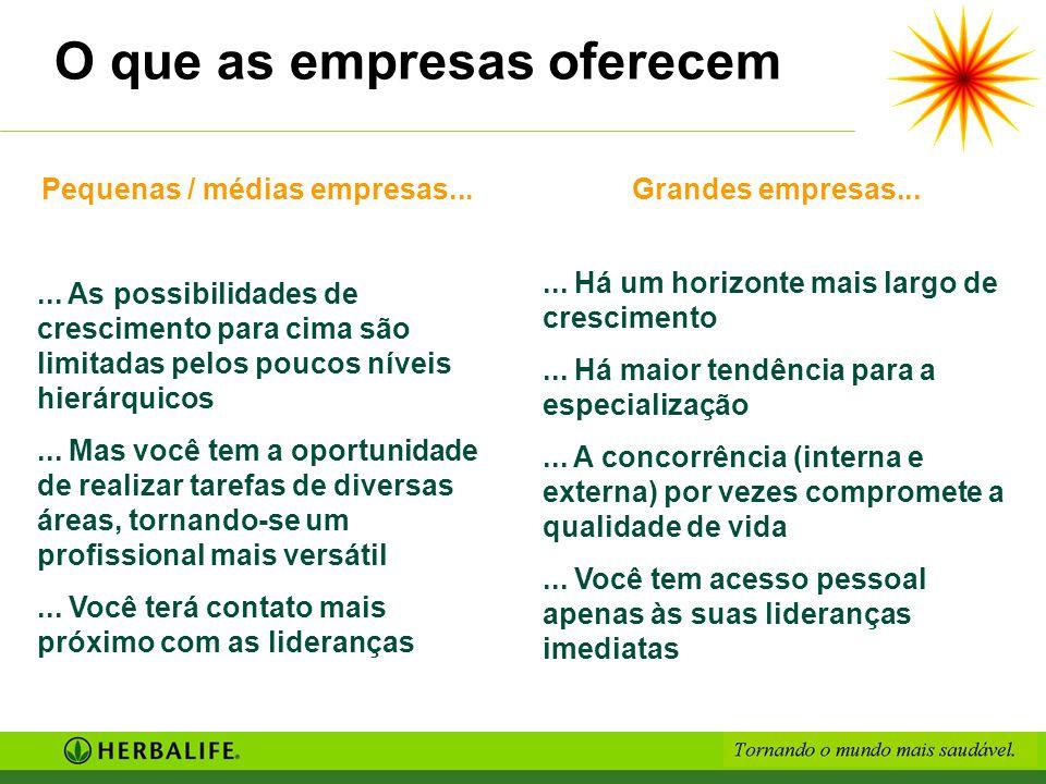 Pequenas / médias empresas...