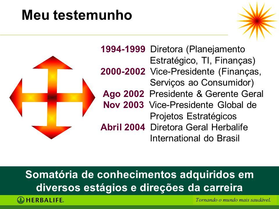 Meu testemunho 1994-1999 Diretora (Planejamento Estratégico, TI, Finanças) 2000-2002 Vice-Presidente (Finanças, Serviços ao Consumidor)