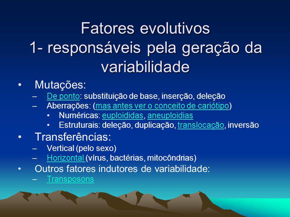 Fatores evolutivos 1- responsáveis pela geração da variabilidade