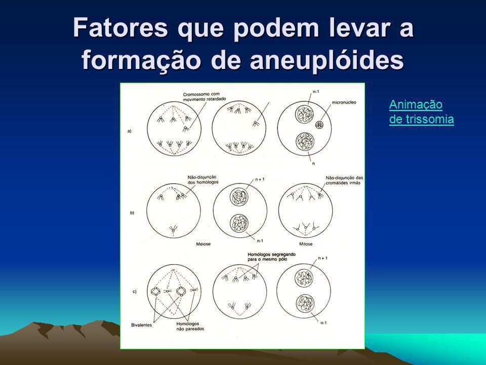 Fatores que podem levar a formação de aneuplóides