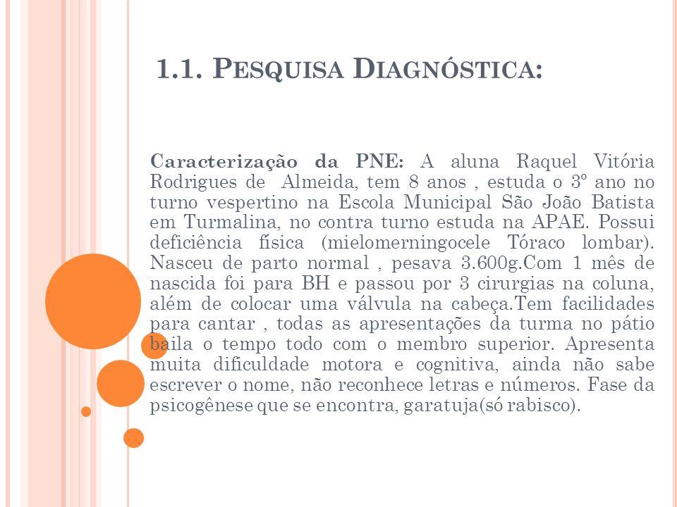 1.1. Pesquisa Diagnóstica:
