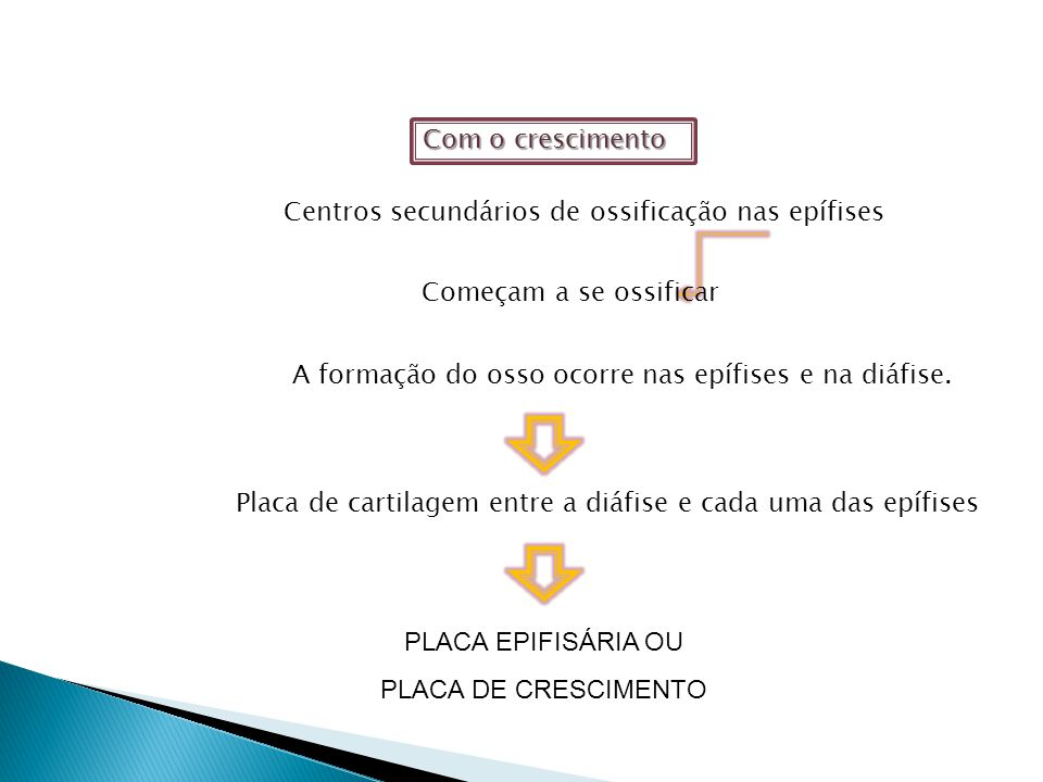 PLACA EPIFISÁRIA OU PLACA DE CRESCIMENTO