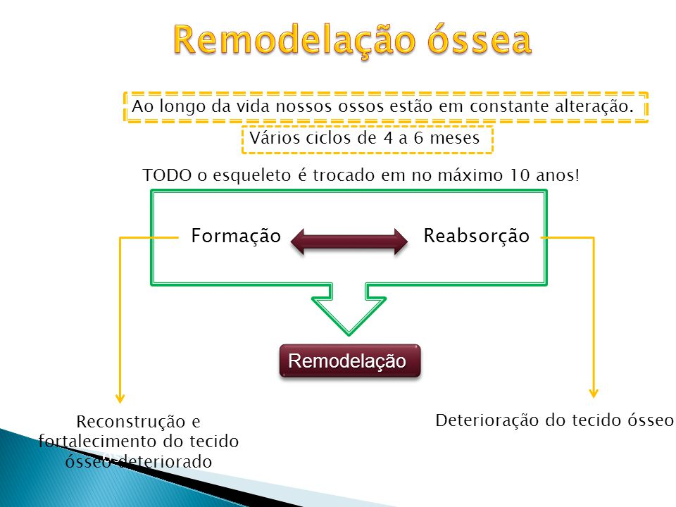 Remodelação óssea Remodelação Formação Reabsorção