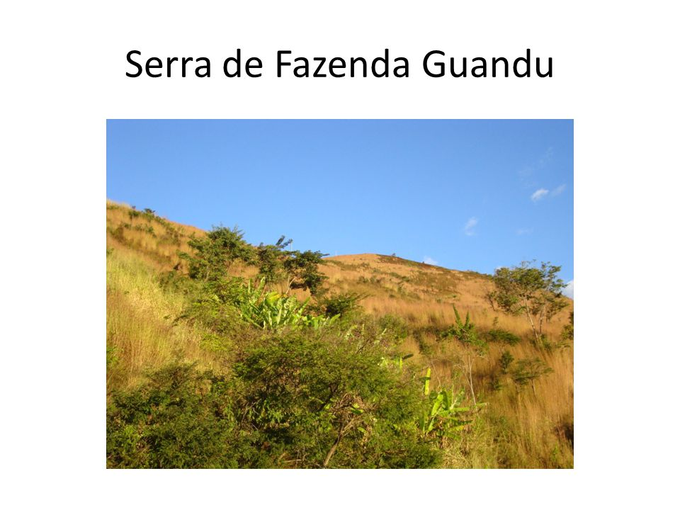 Serra de Fazenda Guandu