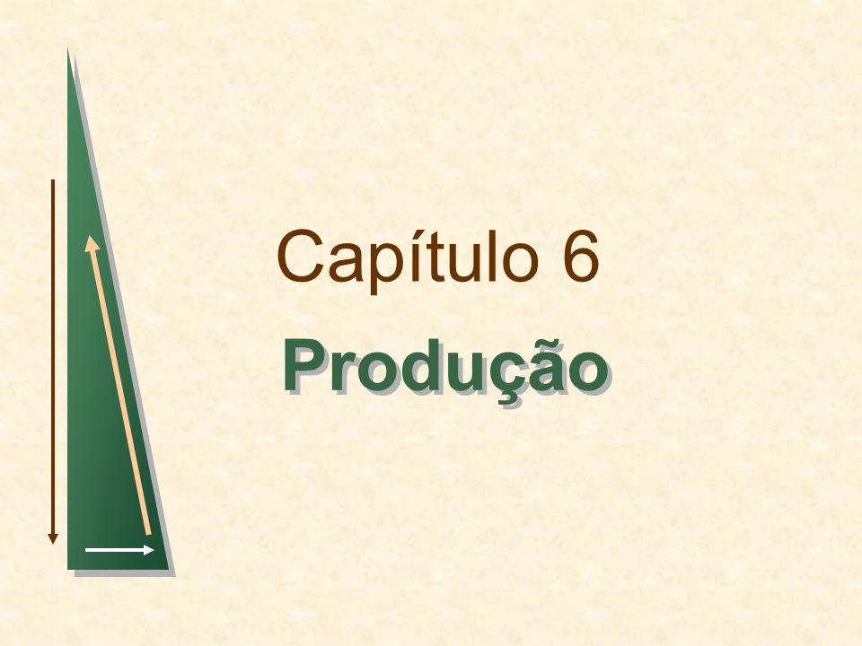 Capítulo 6 Produção 1