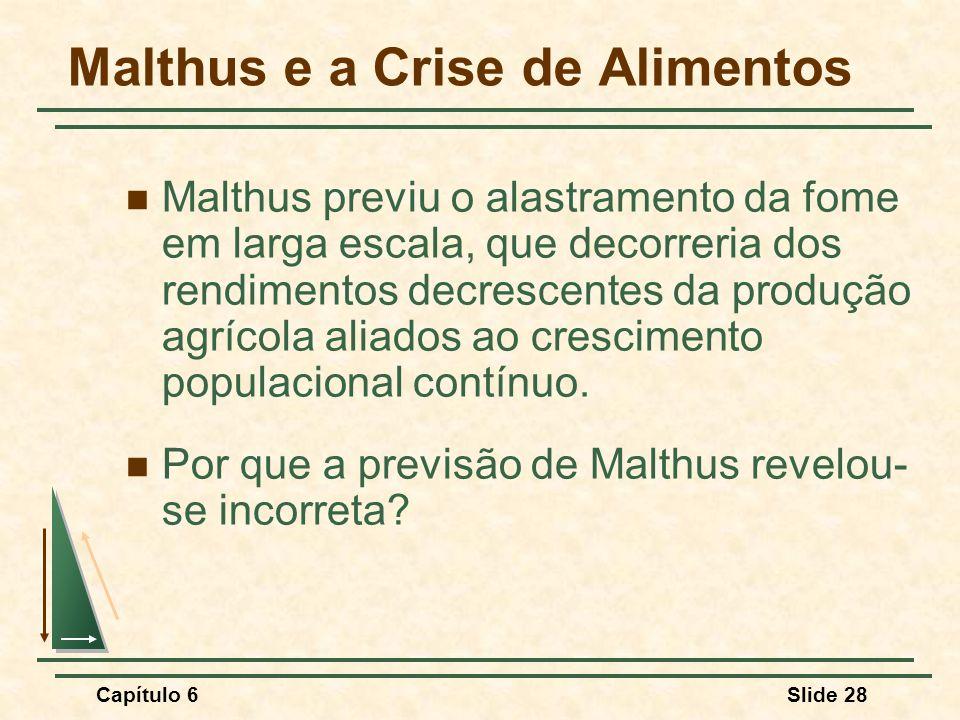 Malthus e a Crise de Alimentos