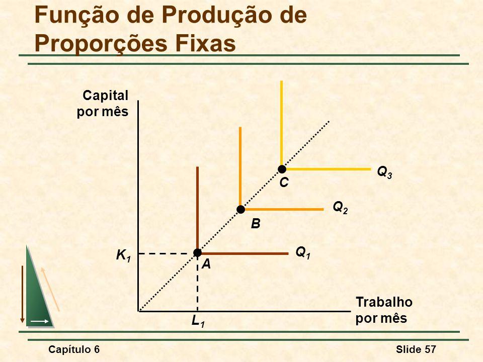 Função de Produção de Proporções Fixas