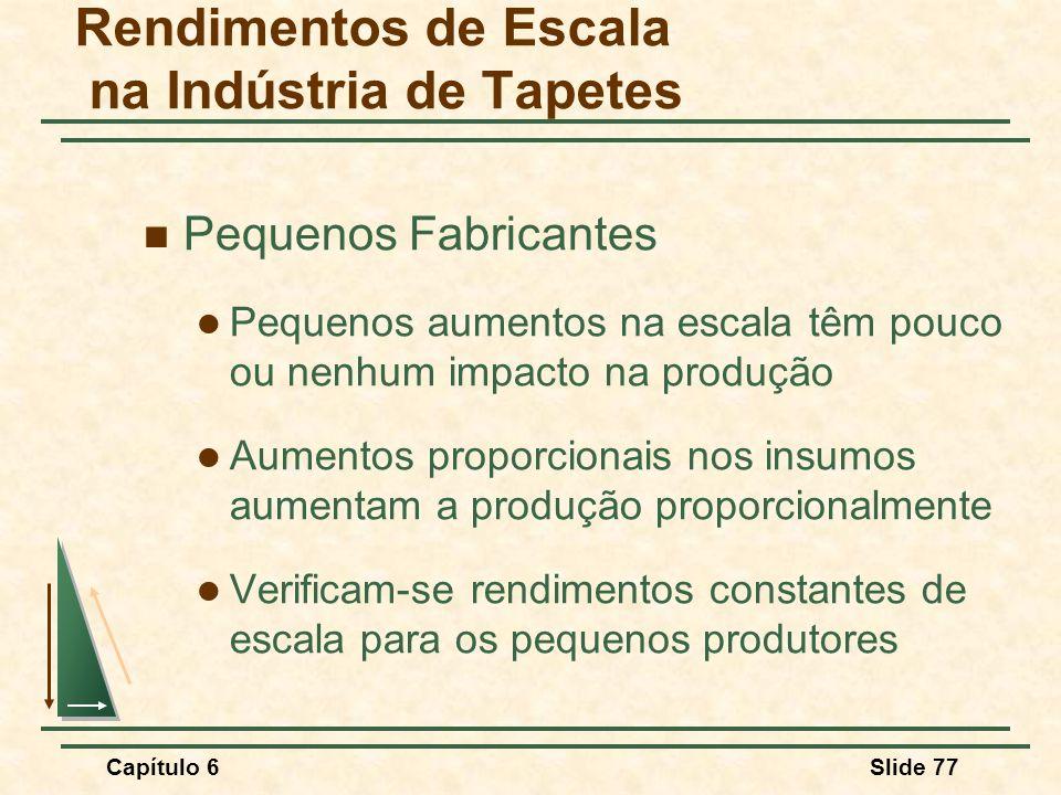 Rendimentos de Escala na Indústria de Tapetes