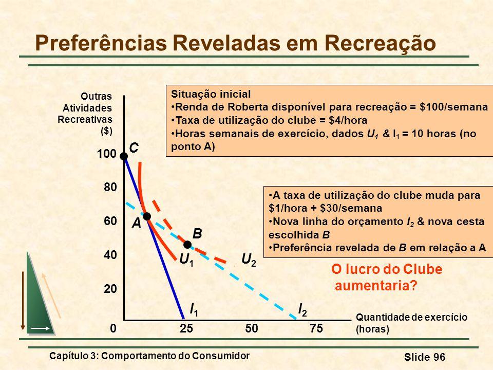 Preferências Reveladas em Recreação
