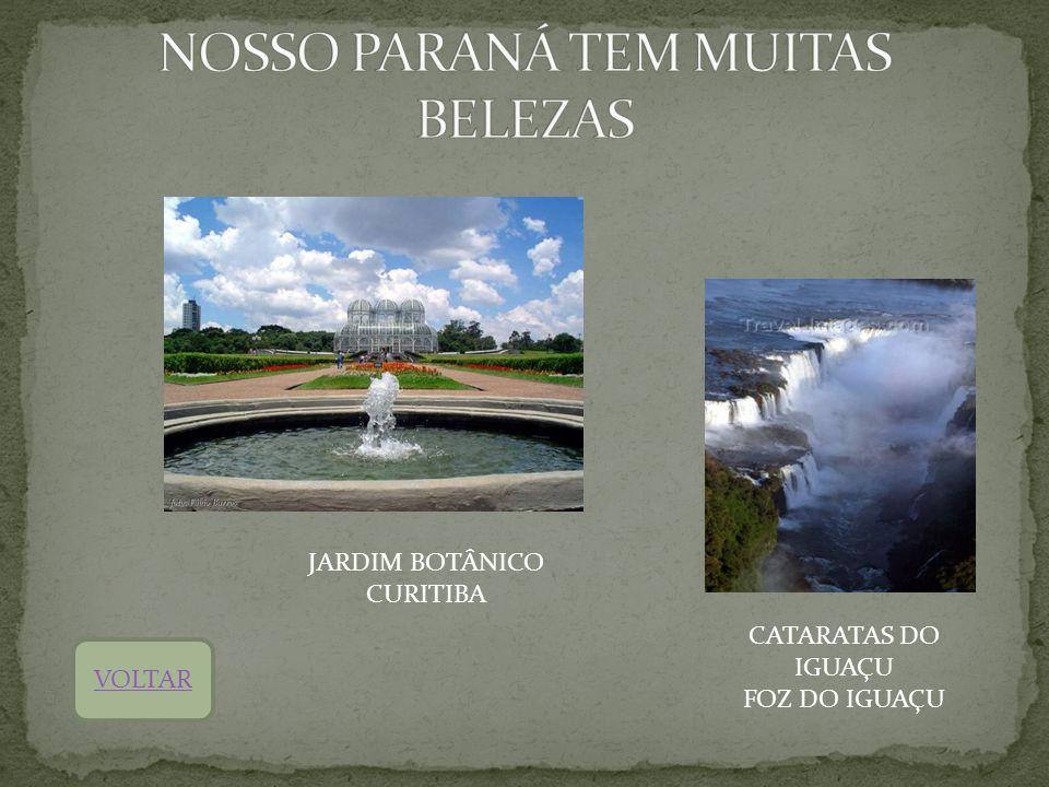 NOSSO PARANÁ TEM MUITAS BELEZAS