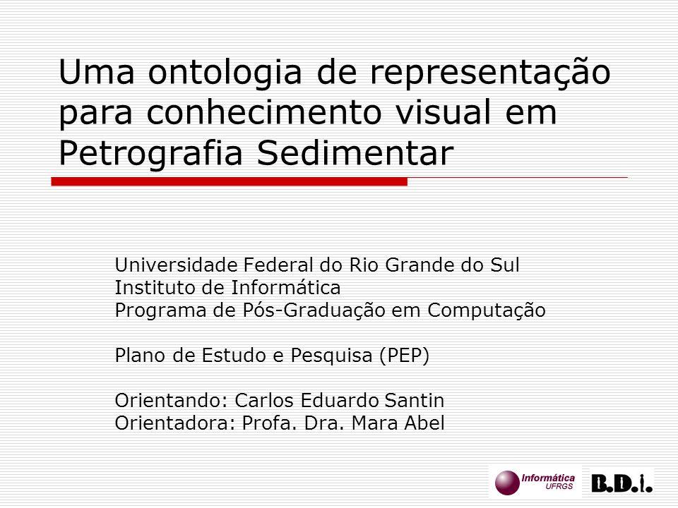 Uma ontologia de representação para conhecimento visual em Petrografia Sedimentar