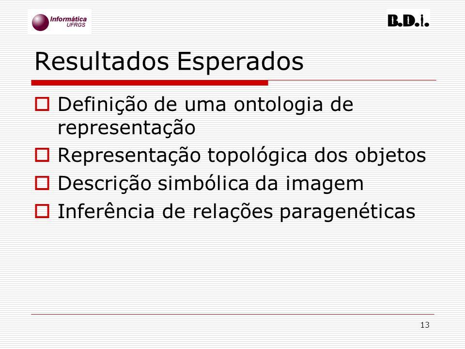Resultados Esperados Definição de uma ontologia de representação